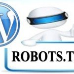 WordPress and Robots.txt File:  Should I Create A Robots.txt File?