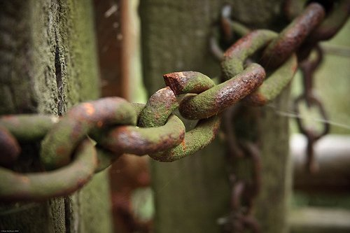 How to Spot Bad Links and Weed Them Out of Your Website