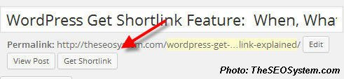 wordpress get shortlink feature wp.me